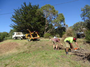Land clearing with onsite chipping service