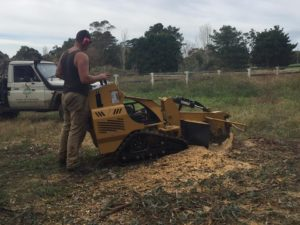 Stump grinding service Baw Baw
