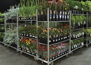 Quality plants ready for delivery and installation